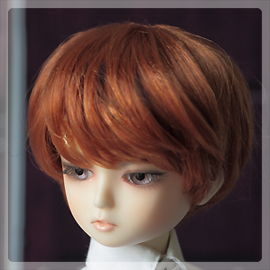 ds_wig0601b